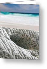 Coral By The Sea Greeting Card