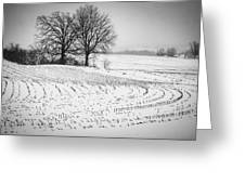 Corn Snow Greeting Card by Kendall McKernon