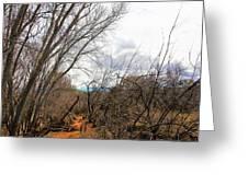 Cottonwood Arizona Jail Trail Trees Path Sky Clouds 5229 Greeting Card