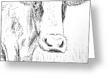 Cow Doodle Greeting Card by Monique Faella