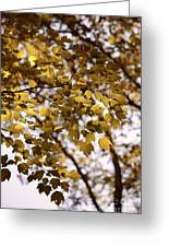 Cozy Fall Day Greeting Card