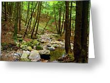 Creek In Massachusetts 2 Greeting Card