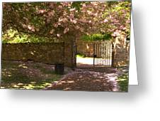 Crichton Church Entrance Gate And Tree In Pink Bloom Greeting Card