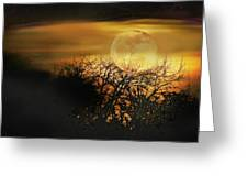 Crows Nest Full Moon Greeting Card