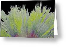 Crystalized Cacti Spears 2c Greeting Card