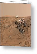 Curiosity Selfie Greeting Card