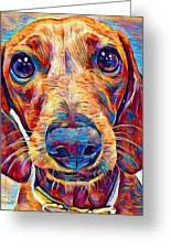 Dachshund 6 Greeting Card