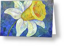 Daffodil Festival I Greeting Card