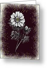 Daisy Sparkle Greeting Card