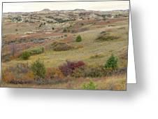 Dakota West Prairie Treasure Greeting Card