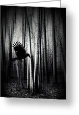Darker - Raven Greeting Card