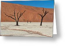 Deadvlei Namibia  Greeting Card by Rand