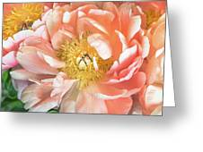 Delicate Greeting Card