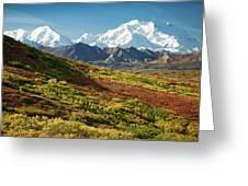 Denali Autumn Greeting Card by Tim Newton