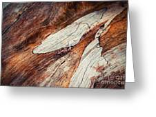 Detail Of Abstract Shape On Old Wood Greeting Card