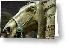 Details Of Head Of Horse From Terra Cotta Warriors, Xian, China Greeting Card