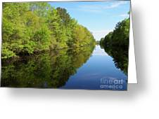 Dismal Swamp Canal In Spring Greeting Card