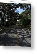 Dixie Highway In Micanopy Florida Greeting Card