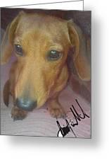 Doggone Greeting Card