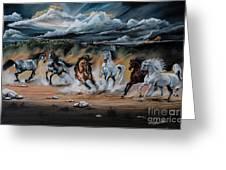 Dream Horse Series 125 - Flat Bottom River Wild Horse Herd Greeting Card
