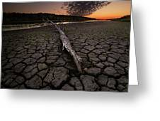 Dry Banks Of Rainy River After Sunset Greeting Card
