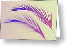 Duotone Background Of Tropical Palm Leaves Greeting Card