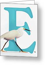 E Is For Egret Greeting Card