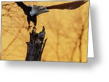 Eagle Flying Off Greeting Card by Steven Santamour