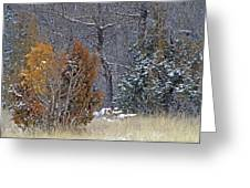 Early Winter On The Western Edge Greeting Card by Cris Fulton