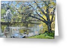 Ellicott Creek Park Greeting Card