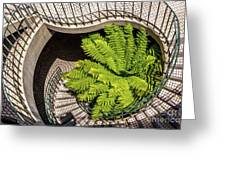 Embarcadero Stairway Greeting Card by Kate Brown