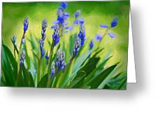 Essense Of Spring Greeting Card