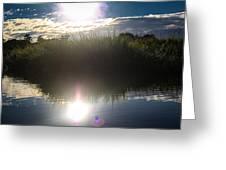 Eternal Sunshine Greeting Card