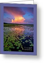 Evening Shower Greeting Card