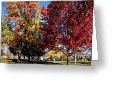 Fall In Wenatchee Greeting Card