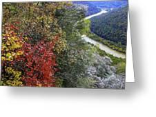 Fall Meets Winter Greeting Card