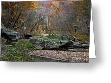 Fall On The Kings River Greeting Card