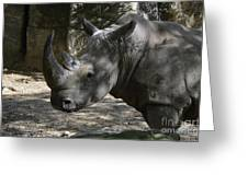 Fantastic Profile Of A Rhino With A Long Horn Greeting Card