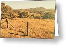 Farm Fields Of Eumundi, Sunshine Coast Greeting Card