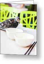 Fast Food Asian Pigeon Greeting Card