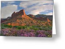 Feather Dalea, Caprock Canyons State Greeting Card
