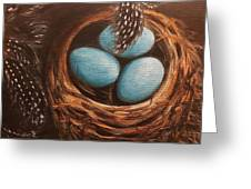 Feathers And Eggs Greeting Card