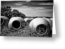 Feed Me - Black And White Greeting Card