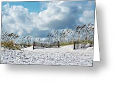 Fences In The Sand Greeting Card