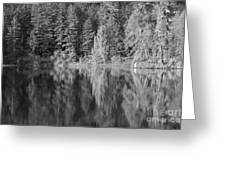 Filter Series 300a Greeting Card by Jeni Gray