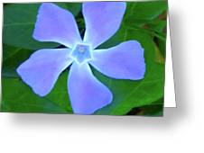Five Petals Greeting Card