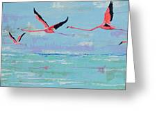 Flamingoes For Audrey Greeting Card