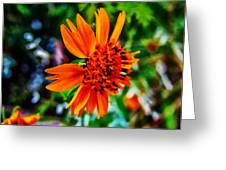 Floral Rush Hour Greeting Card