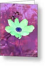 Flower 2918 Greeting Card