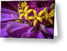 Flowers Within Flowers Greeting Card
